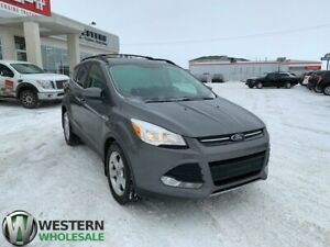 2013 Ford Escape SE- EcoBoost!