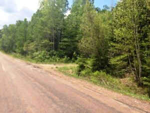 3 Subdivided building lots $9,900 + HST