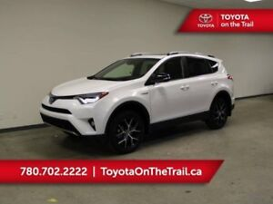 2018 Toyota RAV4 Hybrid SE AWD with Tubstyle Mats, Cargo Liner &