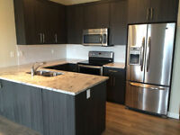 New townhouse 3 bedroom, 2.5 bathrooms for rent in Airdrie