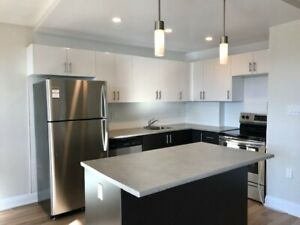Brand New Open-Concept 2 Bedroom Apartments for Rent in Hamilton