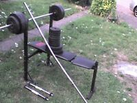 208 lb 95 kg Dumbbell & Barbell Weights + Bench - Heathrow