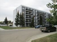GREAT 2 BEDROOM CONDO IN MATRICIE TOWERS!!