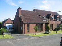 Dungannon - 4 Bedroom, 2 bathroom, V.Large reception, semi-detached House to let