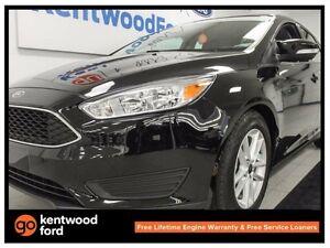 2016 Ford Focus SE- heated seats, heated steering wheel, back up