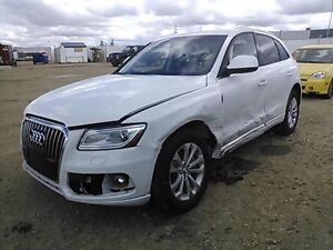 You want to buy car, SUV, Trucks from dealer auctions call me