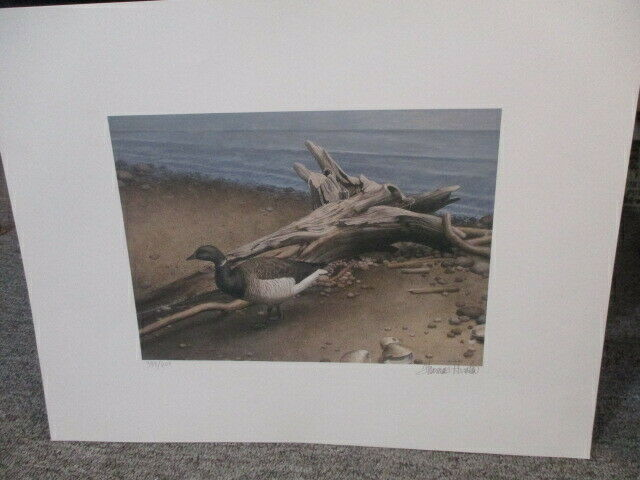 Duck by Driftwood By Thomas Hirata 388/600
