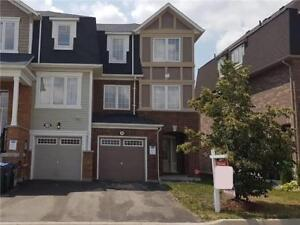 Gorgeous Freehold 3 Bedroom 3 Washroom Town Home Of Brampton!