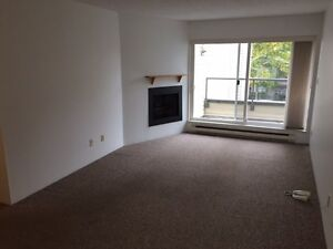 6 months only - new paint, 2 bed + 1.5 bath + parking + balcony!