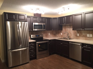 New legal and pet friendly basement suite in Cochrane