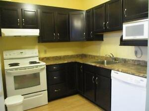 17-047 Furnished condo, South End; Near everything downtown!