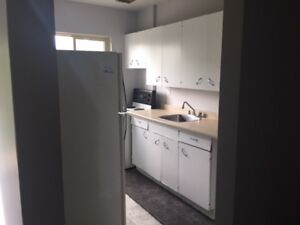 Close to Downtown!  2 Bedroom Updated Apartment