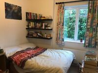 Double room available in Crouch End £650 Pcm