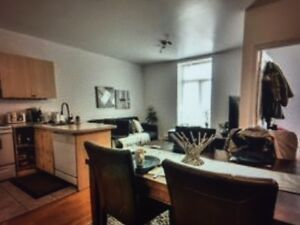 Superb 4 1/2 furnished, all incl., 2Km McGill/UQAM/Concordia