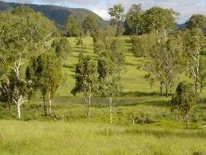 Lovely small farm with vineyard & fixed Income, close to city Beaudesert Ipswich South Preview