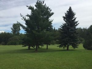 Campground & golf course 4 mi to Wabamun 160ac will finance