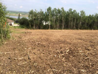 Large, Beautiful Lot in Paradise Hill Sk.