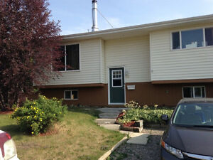 Income property! Dual suites! Great opportunity in Three Hills