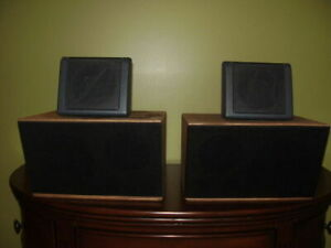 Custom made speakers brands are Bose and Sony.