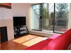 $1400 / 1br - 640ft2 - For young ambitious working professional