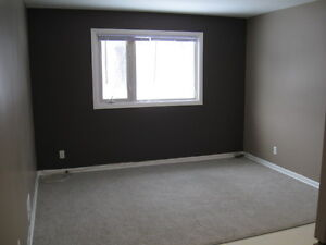 Beautiful St-Boniface - 1 Bedroom Suite Available - May 1st!