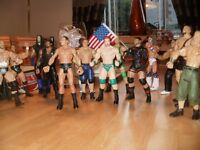 WWE Large Bundle, 17 Wrestlers, 2 x Rings, Hell in a Cell Cage with Ring...Plus Accessories £100