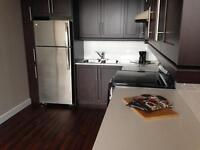Downtown! BRAND NEW 1BR-Open Concept-Penthouse!