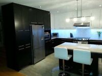kitchen ,cabinet and vanity at a very low price wowww