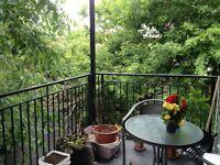Condo moderne et ensoleillé, grande terrasse. Pointe st-charles