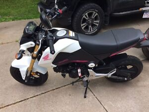2015 Honda Grom - Less then 500kms