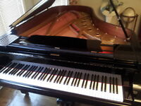 Piano Lessons and Violin/Vocal Coaching