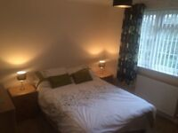 Spare double room available (furnished)