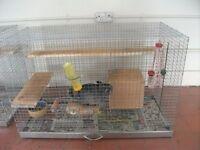 Female Chinchilla With Cage .
