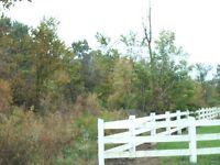 50 acres near Windsor, ON.