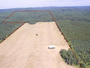 155 acre hunting lot for rent for upcoming deer season zone 10W