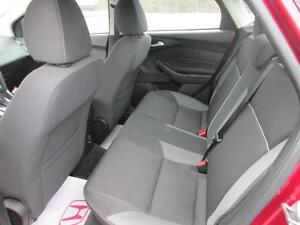 2013 Ford Focus SE   (REDUCED) St. John's Newfoundland image 10