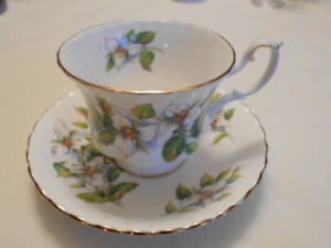 Royal Albert White Trillium Cup & Saucer