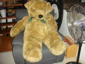 Giant teddy bear Parrearra Maroochydore Area Preview