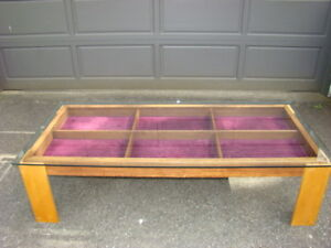 Collection Display Coffee Table