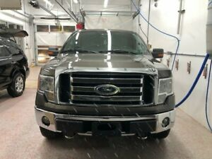 2009 F0RD F150 SUPERCREW 4X4 SAFETIED