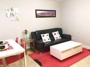 Modern new 2 bedroom basement, fully furnished, on 41st ave