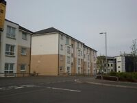 2 bed flat swap for 1 bed in hamilton