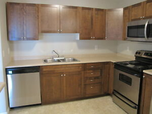 LARGE 2 BEDROOM CONDO STYLE APARTMENT $845 125 Joyce  872-0692