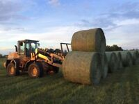 Hay for sale delivered/Green feed/1600lb bales/Delivered Price