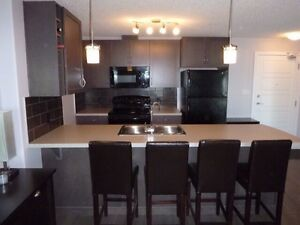 Furnished, Meticulously clean, Executive Condo in South Ed -