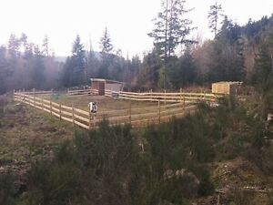 Horse shelter and fencing