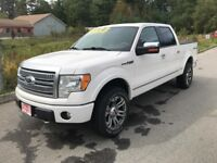 2010 Ford F-150 Platinum Muskoka Ontario Preview
