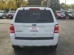 2010 Ford Escape XLT 4WD Sarnia Sarnia Area image 6