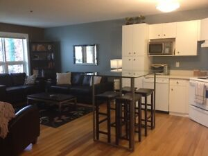 Furnished 2 BDR Condo-Cathedral (Downtown)