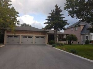 Gorgeous Main Floor And Finished Basement Home!!